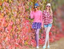 Fille de mode, Autumn Outfit élégant Nature extérieure Photos stock