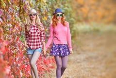 Fille de mode, Autumn Outfit élégant Nature extérieure Image stock