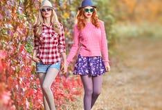Fille de mode, Autumn Outfit élégant Nature extérieure Image libre de droits