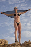 Fille de mode de bikini Image stock