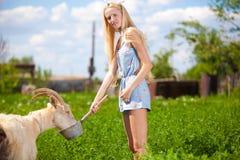 Fille de pays avec une petite chèvre dans des ses mains Photographie stock libre de droits