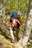 Fille de randonneur avec le sac à dos dans la forêt Photos libres de droits