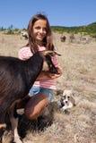 Fille de shepard de bétail Photo stock