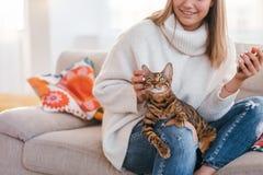 Fille de tendresse d'amour de propriétaire rayant le chat Photos libres de droits