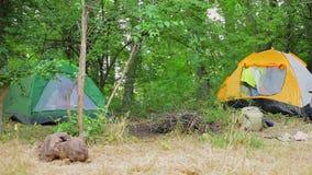 Fille de touristes obtenant la tente intérieure banque de vidéos