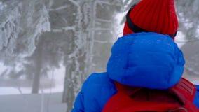 Fille de touristes seule marchant sur une forêt conifére couverte de neige d'hiver dans les montagnes Frosty Weather banque de vidéos