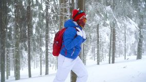 Fille de touristes seule marchant sur une forêt conifére couverte de neige d'hiver dans les montagnes Frosty Weather Mouvement le clips vidéos