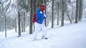 Fille de touristes seule marchant sur une forêt conifére couverte de neige d'hiver dans les montagnes Frosty Weather Mouvement le banque de vidéos