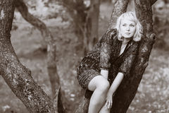 Fille de tristesse s'asseyant sur un branchement d'arbre Image libre de droits