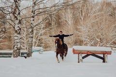 Fille dessus et cheval rouge avec le cheval noir dans le domaine d'hiver photos stock