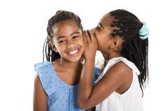 Fille deux jumelle africaine adorable sur le fond de blanc de studio photos libres de droits