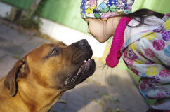 Fille embrassant un animal familier Image stock