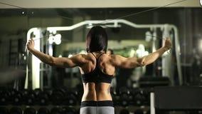 Fille en gymnastique Formation de poids Travail sur les muscles du dos culturisme clips vidéos
