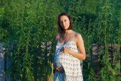 Fille enceinte dans le bain de soleil Images stock