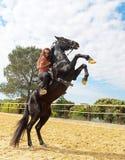 Fille et étalon d'équitation Photographie stock