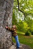 Fille et arbre Photos stock