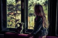 Fille et chat derrière la fenêtre Image libre de droits