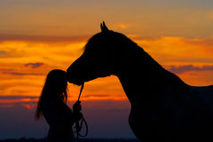 Fille et cheval Images stock