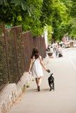 Fille et chien dans la promenade Images stock