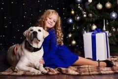 Fille et chien ensemble à la maison, concept de Noël Photos stock
