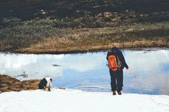 Fille et chien sur la montagne Images libres de droits