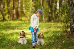 Fille et chiens comme amis heureux ensemble en été dans la nature Photos stock