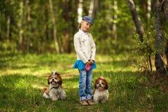 Fille et chiens comme amis heureux ensemble en été dans la nature Images libres de droits