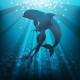 Fille et dauphin Photos libres de droits