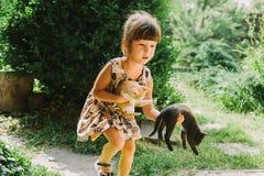 Fille et femme jouant avec des chatons Photo libre de droits