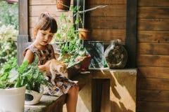 Fille et femme jouant avec des chatons Images libres de droits