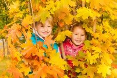 Fille et garçon se cachant dans des feuilles d'automne jaunes Photo stock