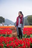Fille et golden retriever en fleurs Photos libres de droits