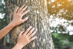 Fille et grand arbre Photographie stock