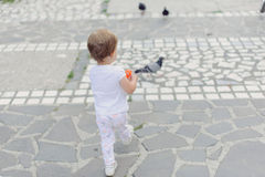 Fille et pigeons Photo stock