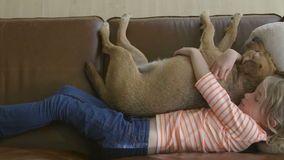 Fille et son chien dormant sur le sofa banque de vidéos