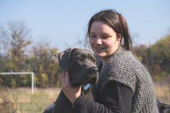 Fille et son chiot gris de corso de canne Photo stock