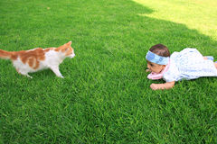 Fille et un chat Image stock