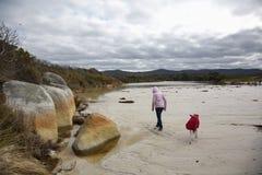 Fille et whippet marchant sur la plage Photographie stock