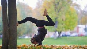 Fille faisant le support acrobatique sur ses mains, jambes dédoublées Formation de gymnaste en parc clips vidéos