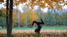 Fille faisant le support acrobatique sur ses mains, jambes dédoublées Formation en parc d'automne banque de vidéos