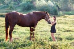Fille frottant son cheval Image libre de droits