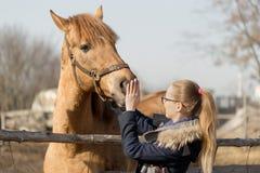 Fille frottant un cheval de pur sang dans le stylo pour le pré Photographie stock