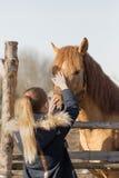 Fille frottant un cheval de pur sang dans le stylo pour le pré Photographie stock libre de droits