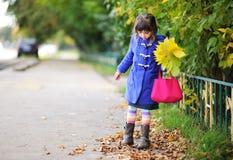 Fille géniale de petit enfant en automne Image libre de droits