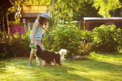 Fille heureuse d'enfant jouant avec son chien d'épagneul et boule de lancement Image libre de droits