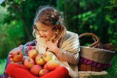 Fille heureuse d'enfant moissonnant des pommes dans le jardin d'automne Activitty rural extérieur saisonnier Images stock