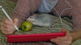 Fille heureuse dans la chambre à coucher fonctionnant à la maison utilisant des écouteurs et un comprimé, sur le lit jouant un an clips vidéos