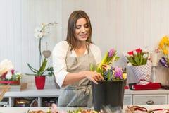 Fille heureuse de fleuriste appréciant le travail avec des fleurs Photographie stock libre de droits