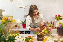 Fille heureuse de fleuriste appréciant le travail avec des fleurs Images stock