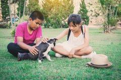Fille heureuse et garçon jouant avec le petit chien à l'arrière-plan de nature Photos stock